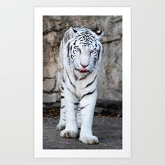 Into The Eyes Of A Tiger Art Print