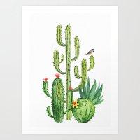 Cactus 6a Art Print