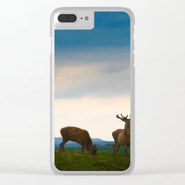 Deer On The Highland Clear iPhone Case