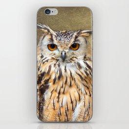 Indian Eagle Owl iPhone Skin