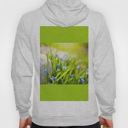 Scilla siberica flowerets named wood squill Hoody