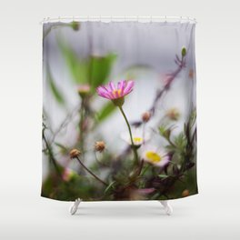 Sennen Cove Shower Curtain