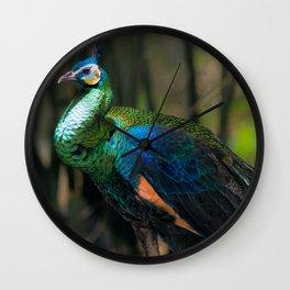 Green Peafowl Wall Clock