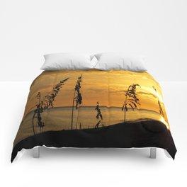 Golden Sea Oats Comforters