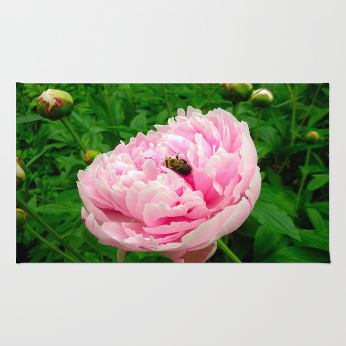 Bumble Bee on a Pink Peony Rug