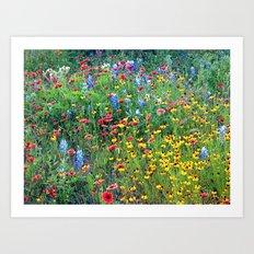 Natures colors Art Print