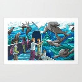 St. Louis Zoo Sea Lions Art Print