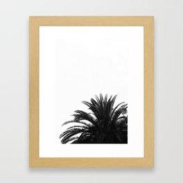 Palm tree Framed Art Print
