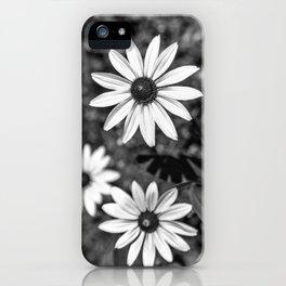 Three Gloriosa daisies B&W iPhone Case