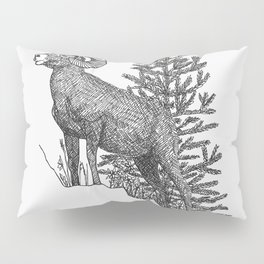COLORADO STATE Pillow Sham