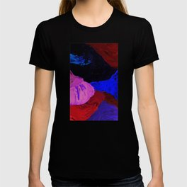 Abstract Feathers by Robert S. Lee T-shirt