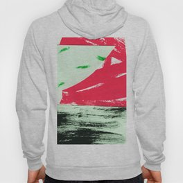 watermelon collage Hoody