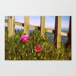 Ocean Feeling Canvas Print