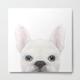French bulldog white Dog illustration original painting print Metal Print