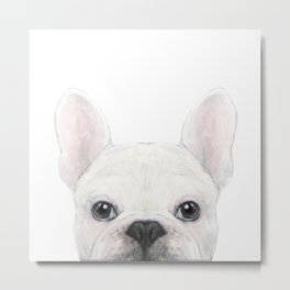 French bulldog white Dog illustration original painting print Metal Print