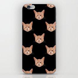Kiki, the pretty blind cat iPhone Skin