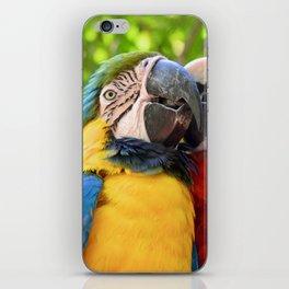 Tropical Kisses iPhone Skin
