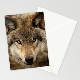 Undivided attention Stationery Cards