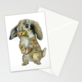 Baby Hare  Stationery Cards