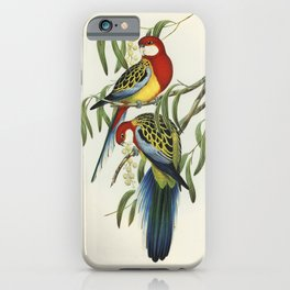 Rose-hill Parakeet (Platycercus eximius) illustrated by Elizabeth Gould (1804-1841) for John Goulds (1804-1881) Birds of Australia (1972 Edition 8 volumes) iPhone Case