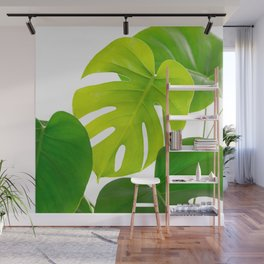 Beautiful Large Green Monstera Leaves On A White Background Fresh Mood #decor #society6 #buyart Wall Mural