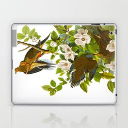 Carolina Pigeon Vintage Illustration Laptop & iPad Skin