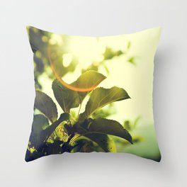 Morning Light Shining Through Branches Of Leaves Nature Photography Throw Pillow