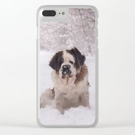 St Bernard dog on the snow Clear iPhone Case