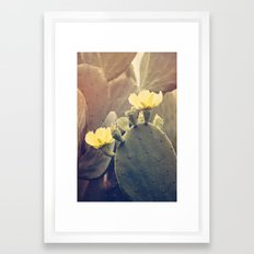 Prickly Pear Framed Art Print