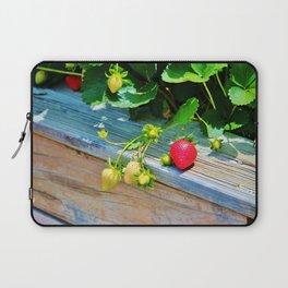 Strawberry Plants Laptop Sleeve