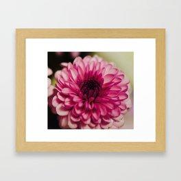 Pink Goodness Framed Art Print
