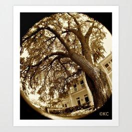 The Oak Art Print