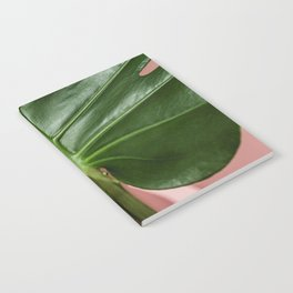Monstera Notebook