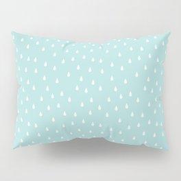 Duck Egg Pillow Sham