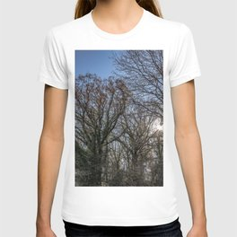 Beautiful day in a winter forest T-shirt