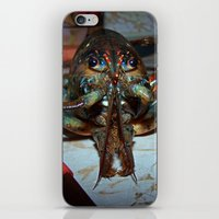 lobster iPhone & iPod Skins featuring Lobster by DanByTheSea