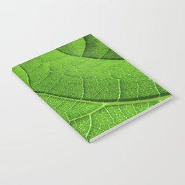 Green Leaf's Veinlet Notebook
