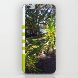 Wattle I do in Vincentia iPhone Skin