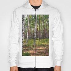 Birch forest Hoody