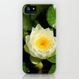 Summerdays iPhone Case