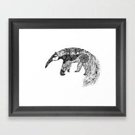 Anteater Framed Art Print