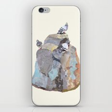 The Pigeon on a Rock iPhone & iPod Skin