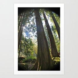 Tree Tree Tree Art Print