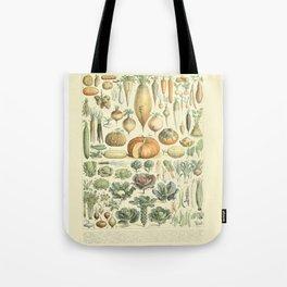 Vegetable Identification Chart Tote Bag