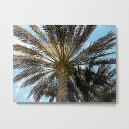 Under the Palm Trees Metal Print
