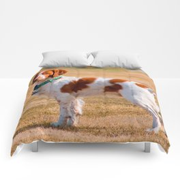 Brittany Spaniel Dog Beautiful Comforters