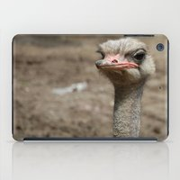 ostrich iPad Cases featuring Ostrich by S0ultrain Photography