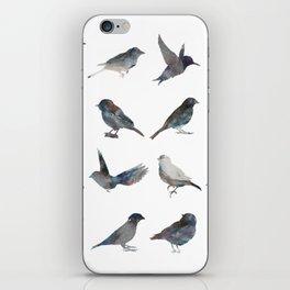 Sparrow Catalog iPhone Skin