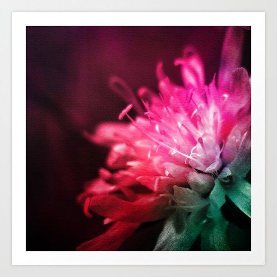 Dream Flower 10 Art Print