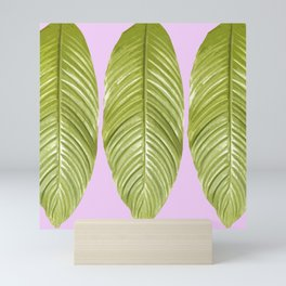 Three large green leaves on a pink background - vivid colors Mini Art Print